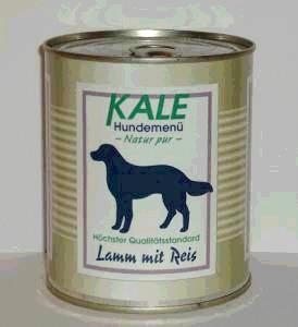Kale Lamm mit Reis