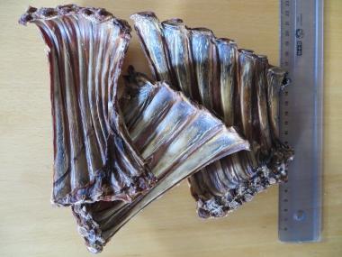 Kalbs-Rippchen-Leisten, 200g (43,50 €/kg)